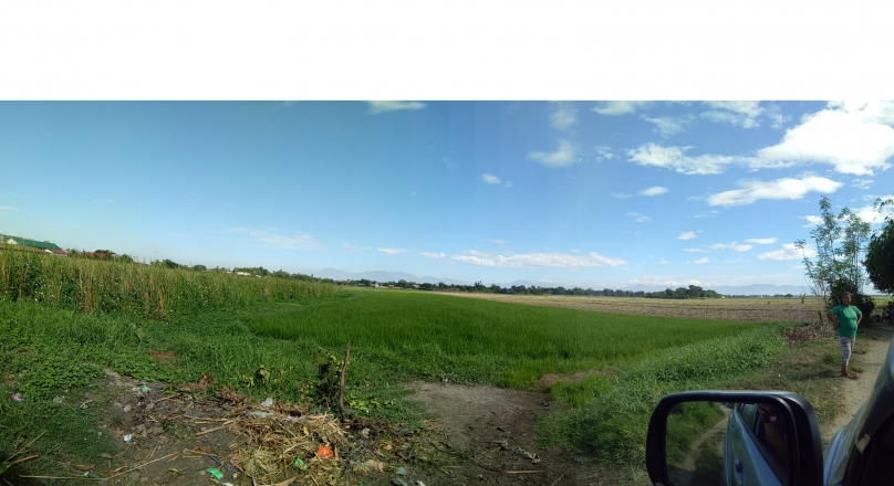 Lot For Sale in Nancayasan, Urdaneta City, Pangasinan